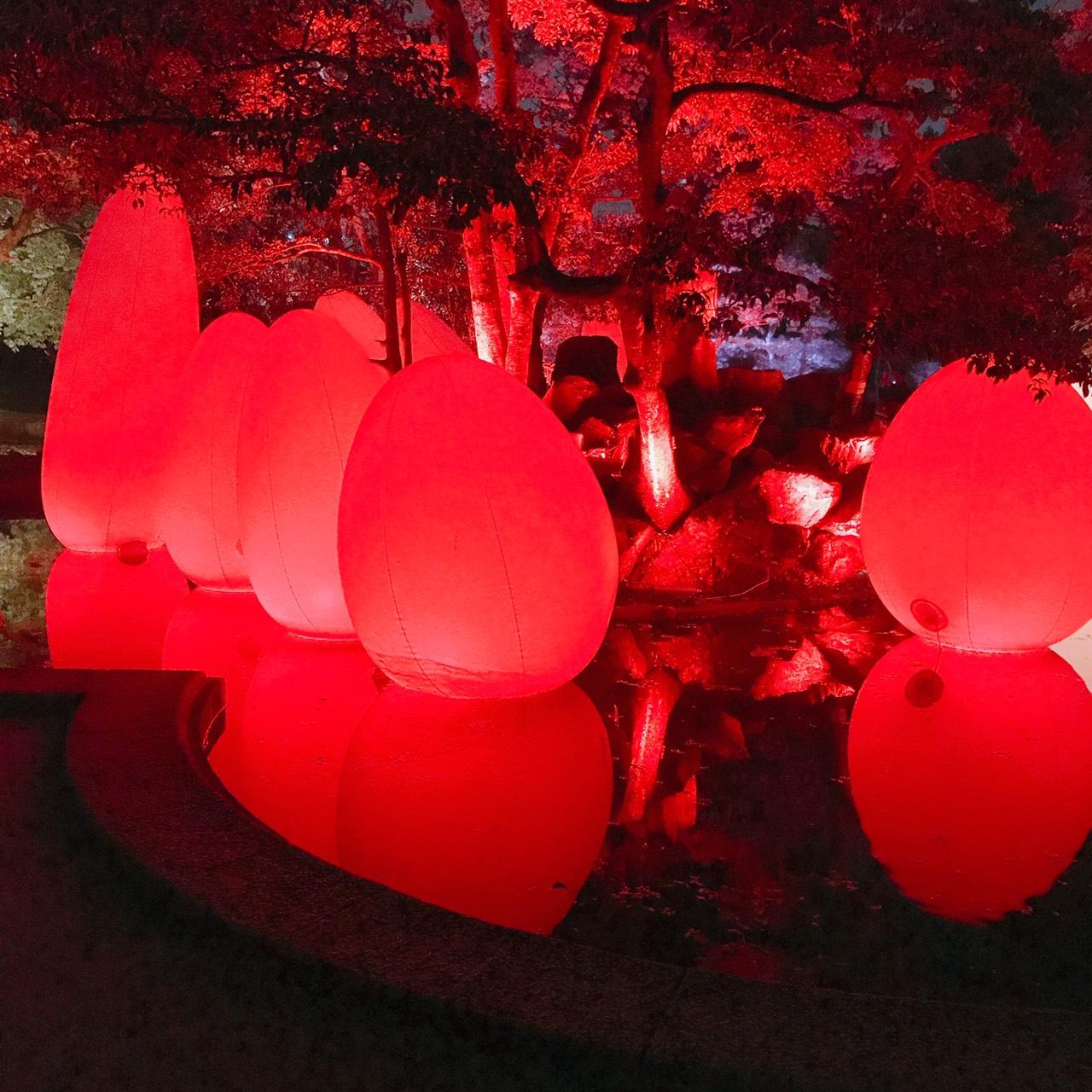 チームラボ 広島城 光の祭に行ってきました。