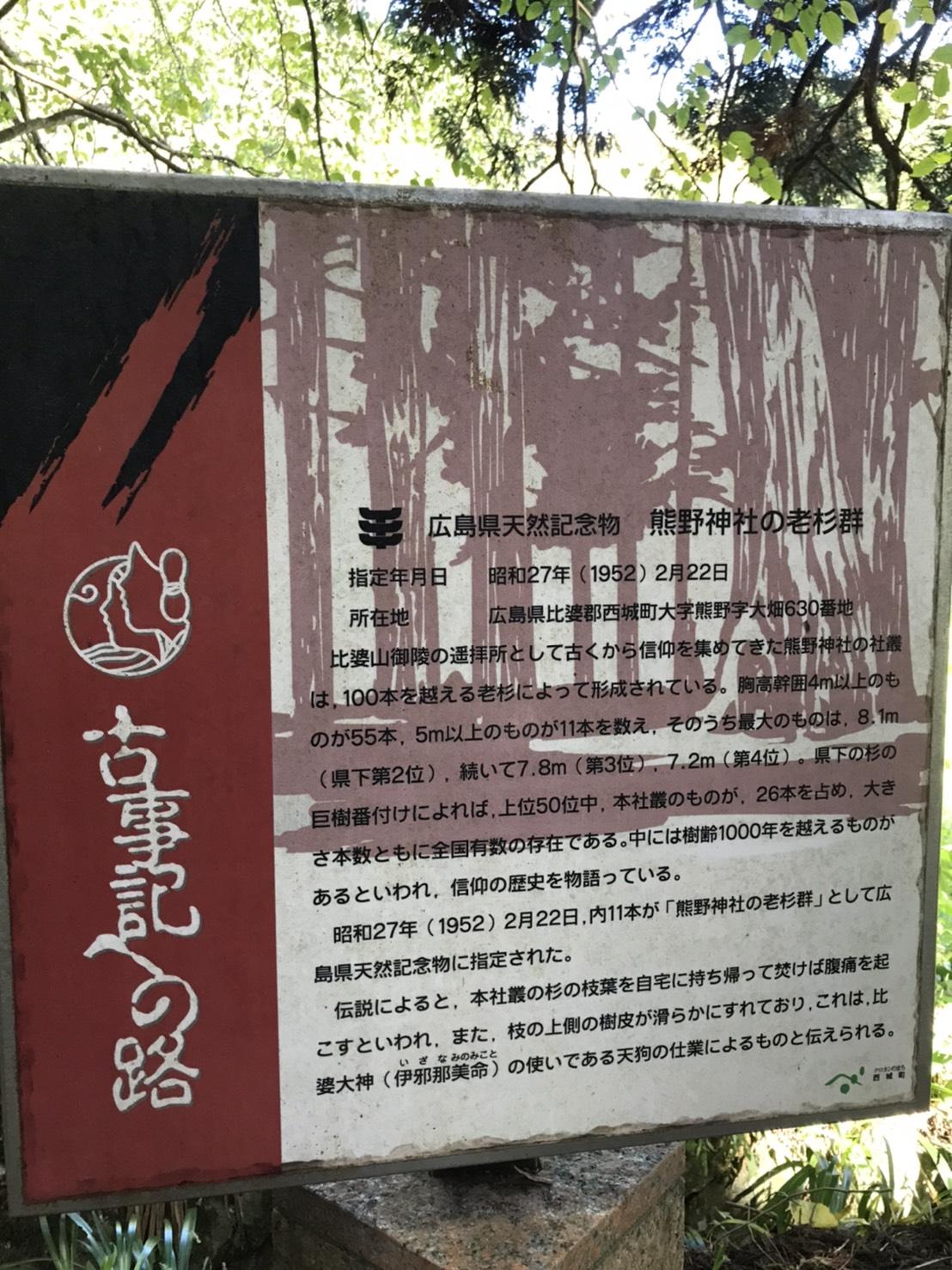 熊野神社の老杉群